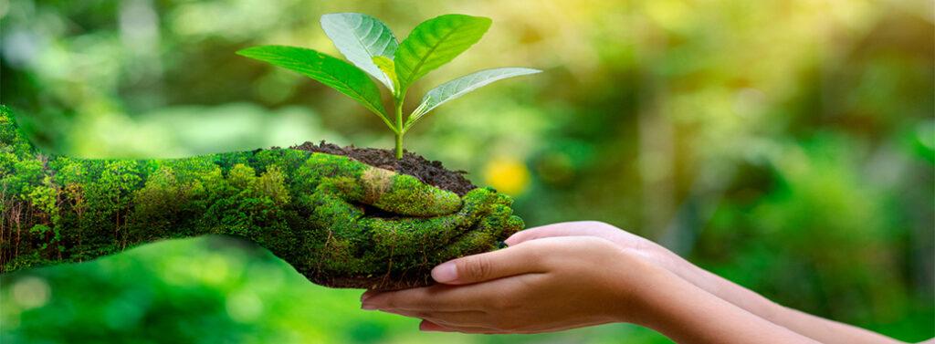 εικόνα για την προστασία του περιβάλλοντος