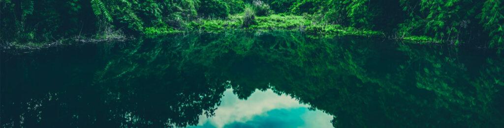 καθαρή τροπική λίμνη